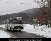 A regular bus service arrives at Vinye