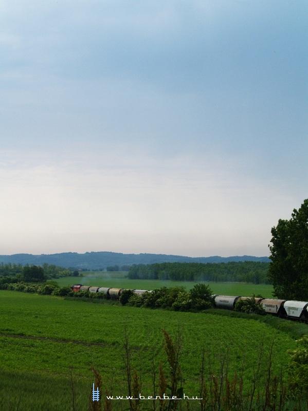 M62 175 húzza gabonavonatát Keszõhidegkút-Gyönk felé fotó