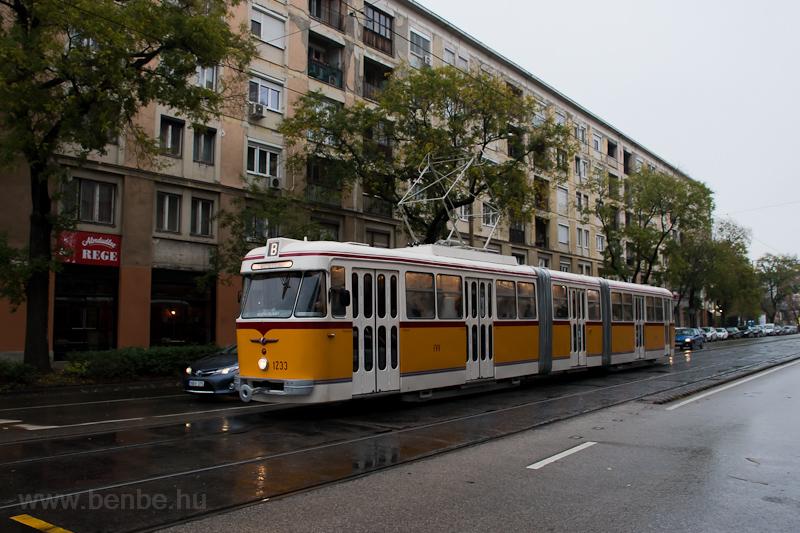 The BKV FVV-csuklós 1233 se picture