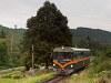 A Királyréti Erdei Vasút M06 401 Hártókút és Szokolya-Mányoki között
