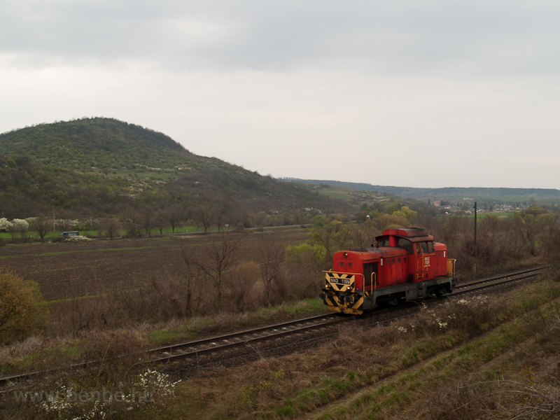 The MÁV-TR M43 1159 seen between Mátraverebély and Tar  photo