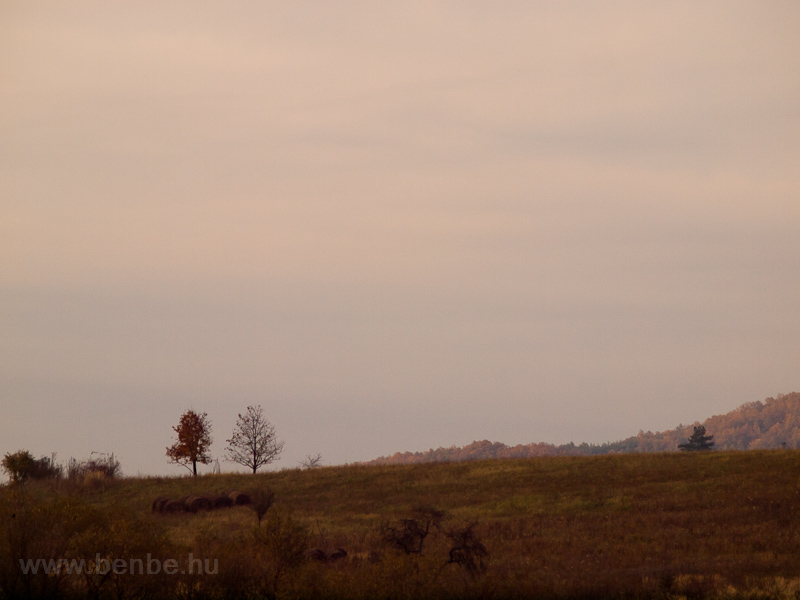 The hillside by Somosk&#337 photo