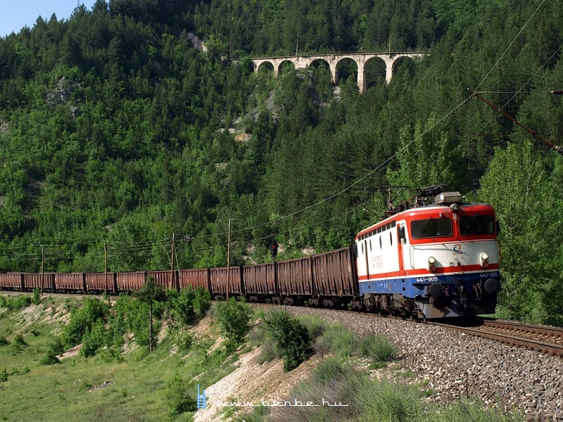 The 441-905 with a freight train at Ovcari station photo