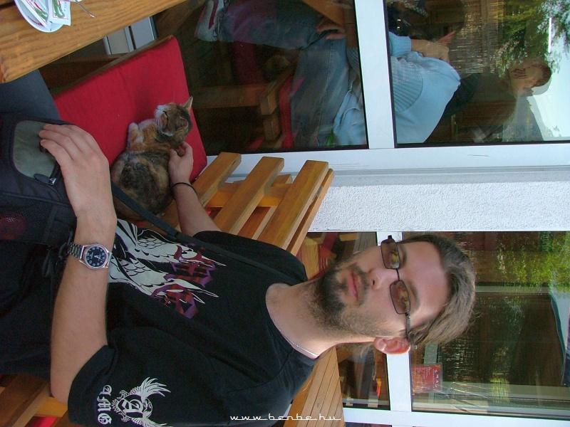 Cica a pályaudvar elõtti egyik kávézóban fotó
