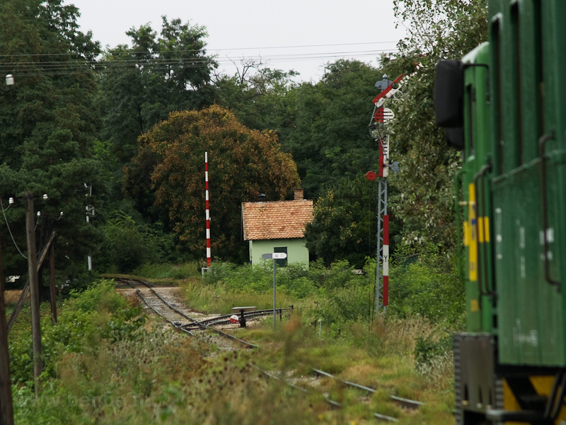 A Széchenyi Múzeumvasút 2921 001-0 pályaszámú C50-ese Nádtelepnél fotó