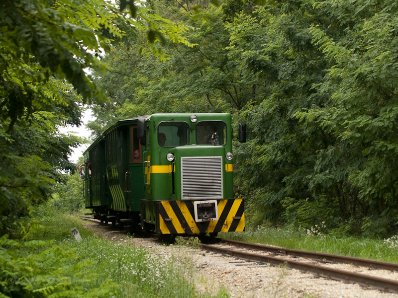 The Kiscenk locomotive is seen between Nagycenk station and Sorompó stop photo