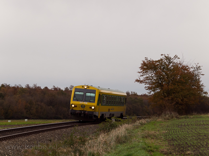 The GYSEV's green-yellow 247 509 is seen between Lépesfalva and Fraknó photo