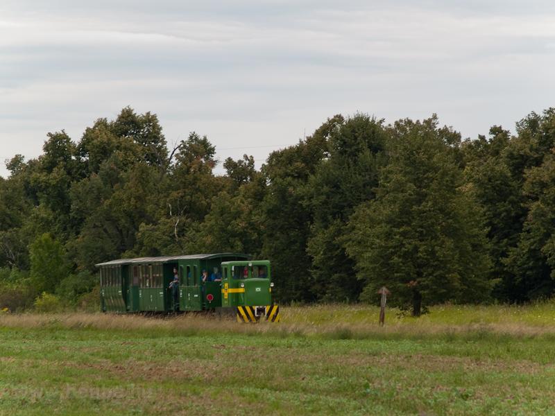 A Széchenyi Múzeumvasút 2921 001-0 pályaszámú C50-ese Nagycenk és Nádtelep között fotó