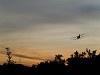 Szúnyogírtó AN-2-es Fertőrákoson
