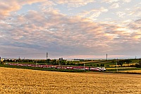 175 years of railway in Austria - the huge Austrian flag of a railjet headed by 1116 249 is returning from the Fertő-tó (Neusiedler See) to Vienna now seen between Nezsider (Neusiedl am See, Austria) and Parndorf Ort