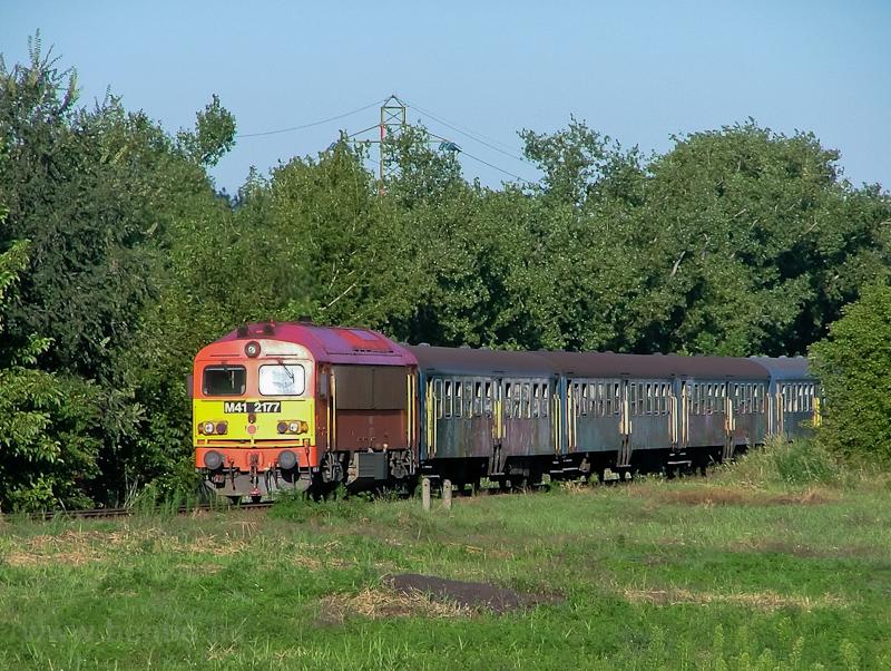 A MÁV M41 2177 az Újpesti vasúti híd és Aquincum felső között fotó