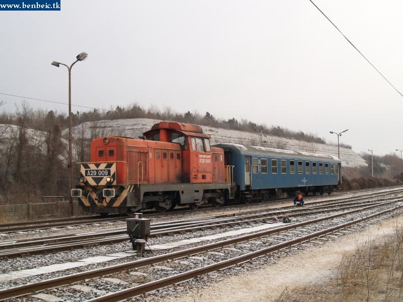 A29 009 a havas domboldal elõtt áll modellt fotó
