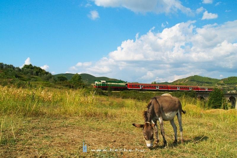 T669 1047 Elbasan és Bishqem között fotó