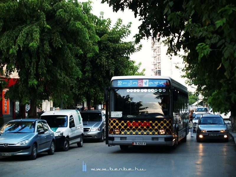 Sárga-fekete pepita busz Elbasanban fotó