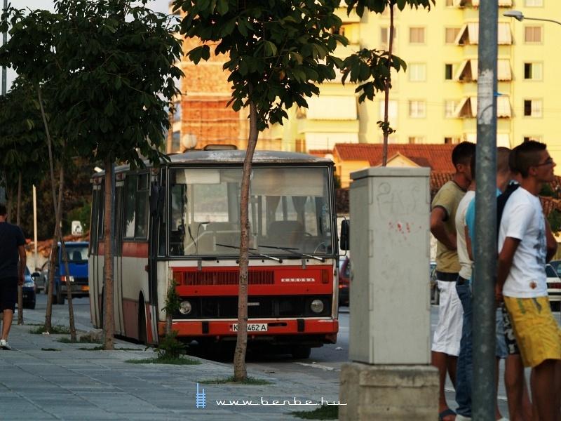 Karosa busz Elbasanban fotó