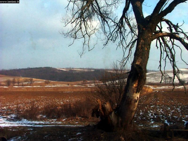 Elõ-Nógrádi táj a vonat ablakából fotó