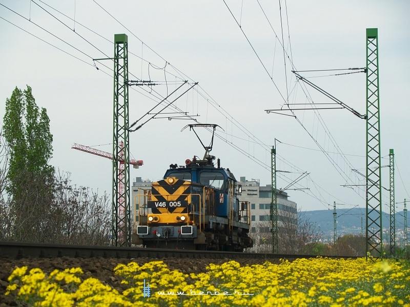 V46 005 a Déli vasúti hídnál fotó