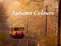 Autum Colours