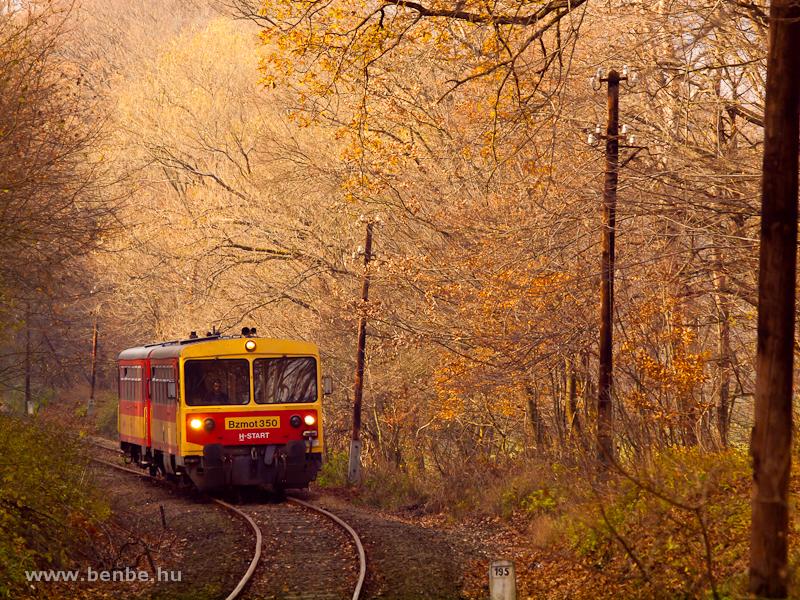 A Bzmot 350 Szokolya és Berkenye között az őszi erdőben fotó