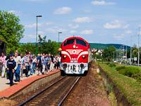 Az M61 001 a Balaton Retró Expresszel Csopak megállóhelyen