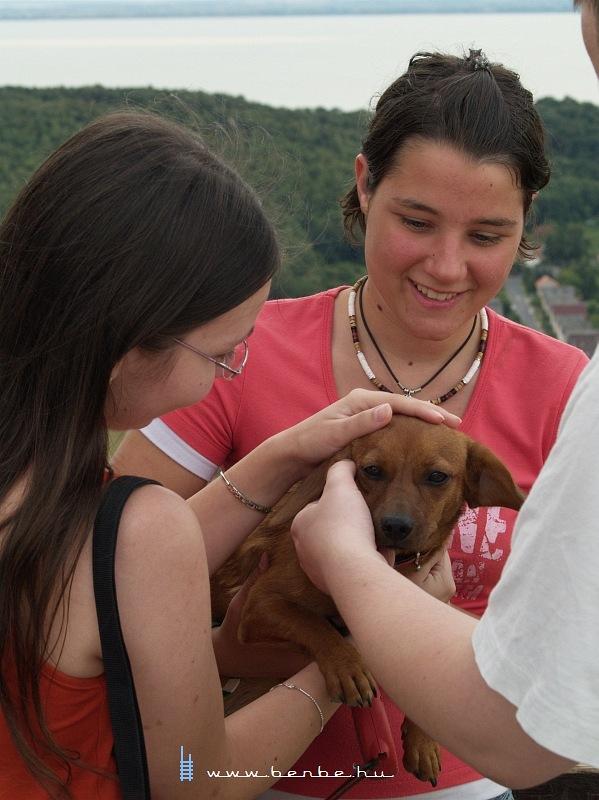 Német-magyar lány kutyával a szigligeti várban fotó