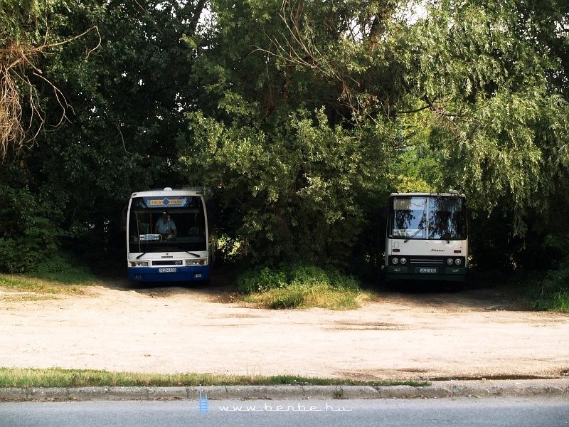 Hûsölõ buszok Keszthelyen fotó