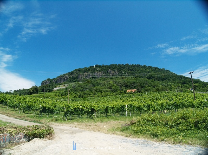 The Badacsony hill photo