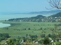 The M41 2331 between Badacsonylábdihegy and Badacsonytördemic-Szigliget with the Lake Balaton in the background
