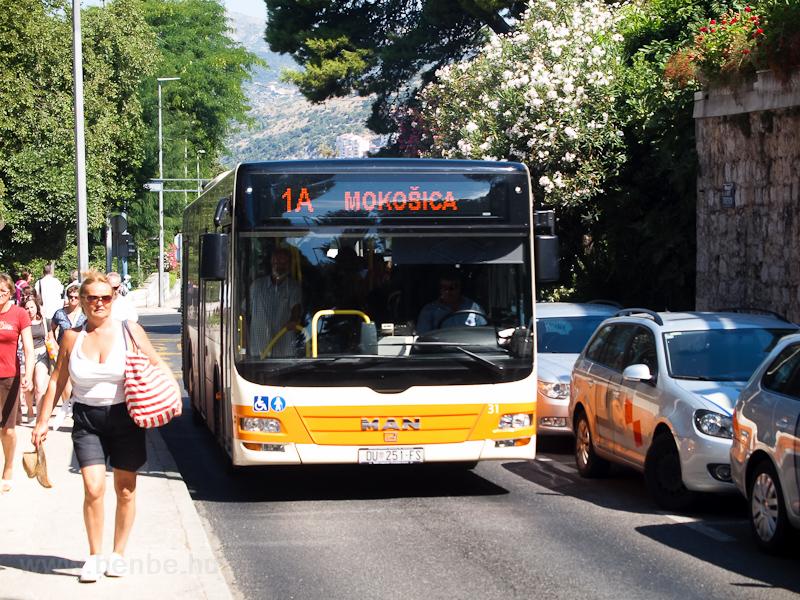 MAN autóbusz Dubrovnikban fotó