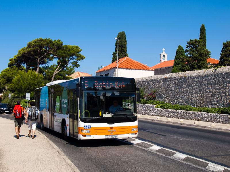 Autóbusz Dubrovnikban fotó