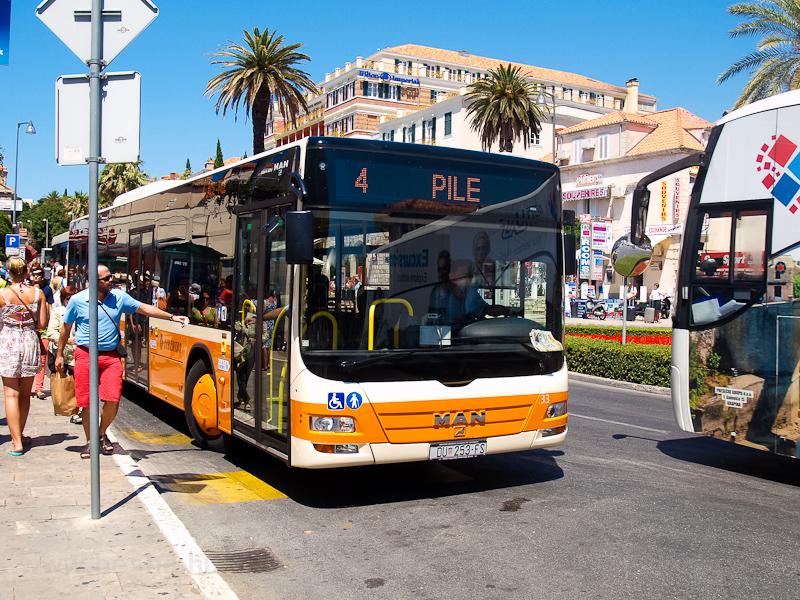 Dubrovniki autóbusz fotó