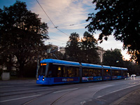 German trams