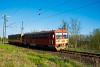 The MÁV-START 117 343 seen between Kisnémedi and Vácrátót