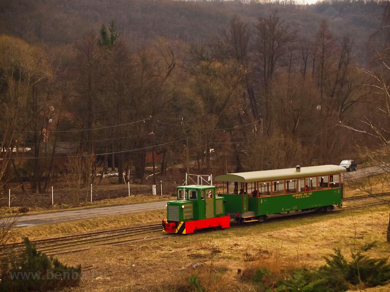 A Nagybörzsönyi Erdei Vasút C50 3756 pályaszámú kismozdonya a Királyréti Erdei Vasúton a paphegyi felújítása alkalmából rendezett fotósvonaton Hártókút állomáson fotó