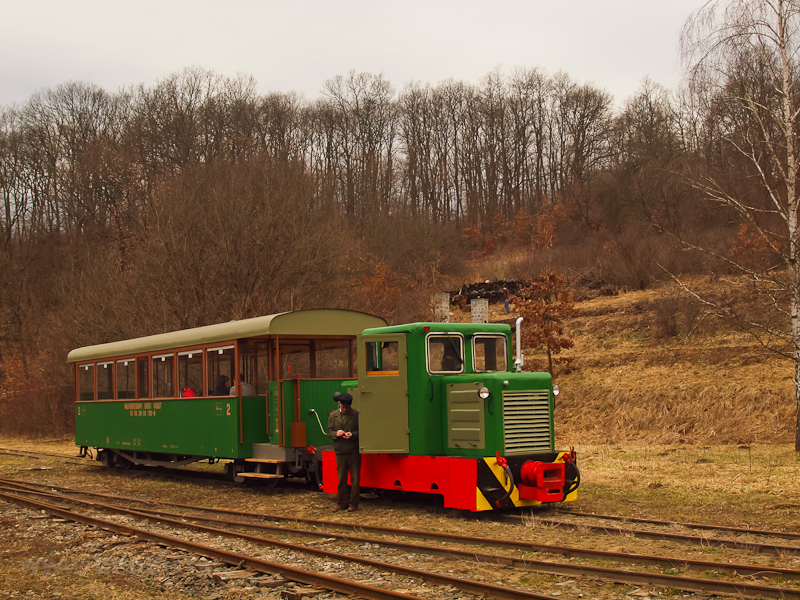 The C50 3756 of the Nagybörzsöny Forest Railway seen at Hártókút station on the photo charter after it was refurbished at the Királyrét Forest Railway's workshop at Paphegy photo