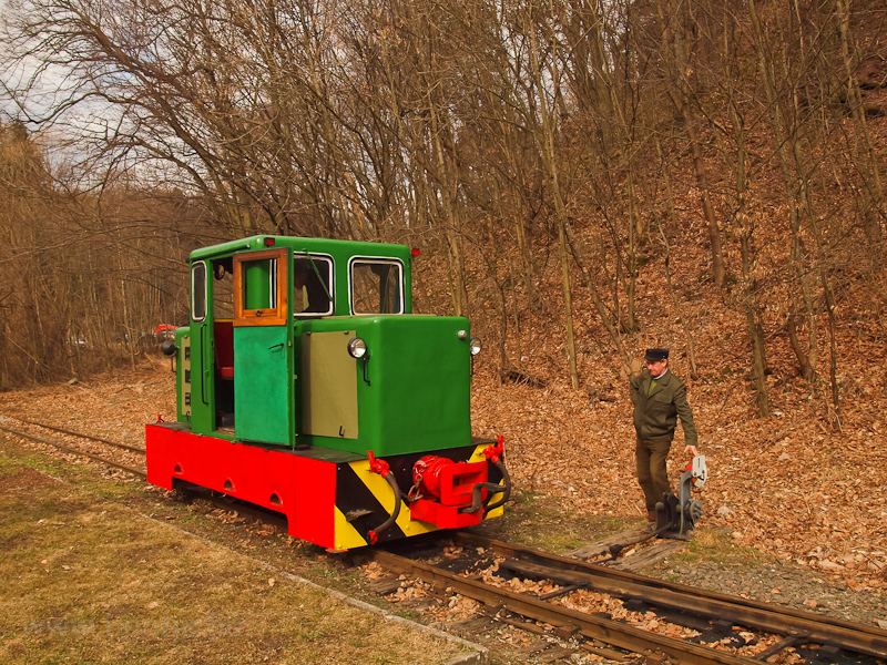 The C50 3756 of the Nagybörzsöny Forest Railway seen at Királyrét station on the photo charter after it was refurbished at the Királyrét Forest Railway's workshop at Paphegy photo