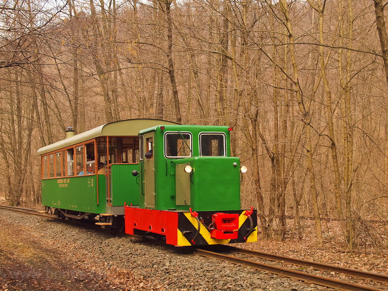 The C50 3756 of the Nagybörzsöny Forest Railway seen between Királyrét and Királyrét alsó on the photo charter after it was refurbished at the Királyrét Forest Railway's workshop at Paphegy photo