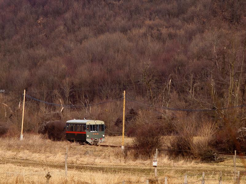 """A Királyréti Erdei Vasút M06-401 pályaszámú """"Tóbi"""" motorkocsija Szokolya-Riezner és Paphegy között fotó"""