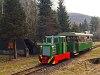 A Nagybörzsönyi Erdei Vasút C50 3756 pályaszámú kismozdonya a Királyréti Erdei Vasúton a paphegyi felújítása alkalmából rendezett fotósvonaton Börzsönyliget megállóhelyen