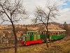 A Nagybörzsönyi Erdei Vasút C50 3756 pályaszámú kismozdonya a Királyréti Erdei Vasúton a paphegyi felújítása alkalmából rendezett fotósvonaton Hártókút és Szokolya-Mányoki között