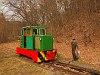 A Nagybörzsönyi Erdei Vasút C50 3756 pályaszámú kismozdonya a Királyréti Erdei Vasúton a paphegyi felújítása alkalmából rendezett fotósvonaton Királyrét állomáson