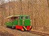 A Nagybörzsönyi Erdei Vasút C50 3756 pályaszámú kismozdonya a Királyréti Erdei Vasúton a paphegyi felújítása alkalmából rendezett fotósvonaton Királyrét és Királyrét alsó között