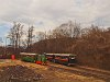 A Nagybörzsönyi Erdei Vasút C50 3756 pályaszámú kismozdonya a Királyréti Erdei Vasúton a paphegyi felújítása alkalmából rendezett fotósvonaton Paphegyen