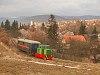 A Nagybörzsönyi Erdei Vasút C50 3756 pályaszámú kismozdonya a Királyréti Erdei Vasúton a paphegyi felújítása alkalmából rendezett fotósvonaton Szokolya-Mányoki és Hártókút között