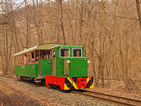 The C50 3756 of the Nagybörzsöny Forest Railway seen between Királyrét and Királyrét alsó on the photo charter after it was refurbished at the Királyrét Forest Railway's workshop at Paphegy