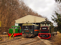The C50 3756 of the Nagybörzsöny Forest Railway, the M06-401 <q>Toby</q> and the Mk48 2017 of the Királyréti Erdei Vasút seen at Paphegy on the photo charter after it was refurbished at the Királyrét Forest Railway's workshop at Paphegy