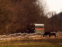 """A Királyréti Erdei Vasút M06-401 pályaszámú """"Tóbi"""" motorkocsija Királyrét-alsó és Királyrét között"""