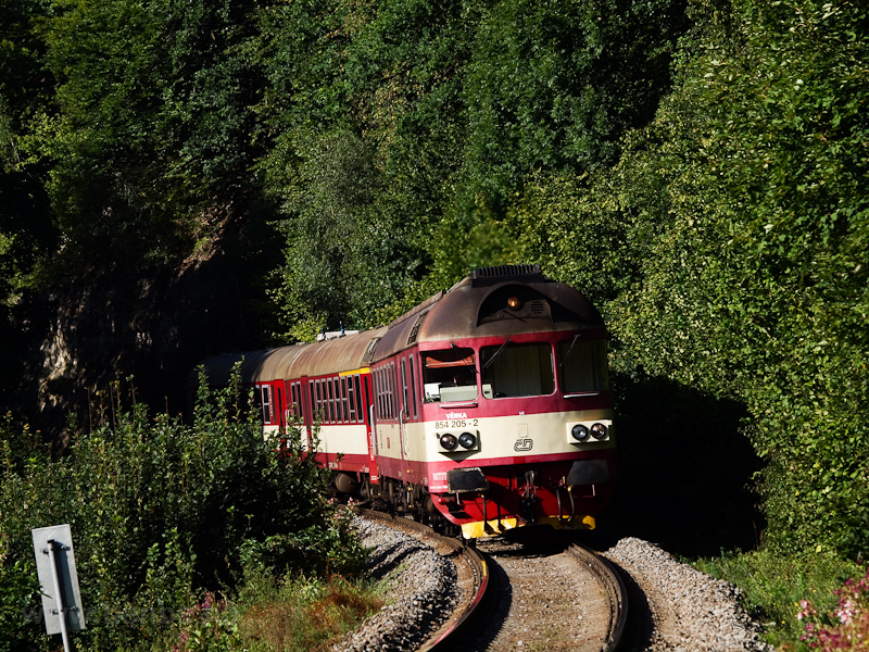 The ČD 854 205-2 seen  photo