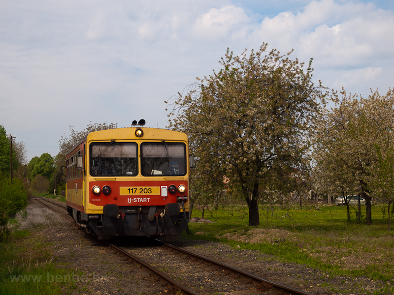 The MÁV-START 117 203 seen  picture