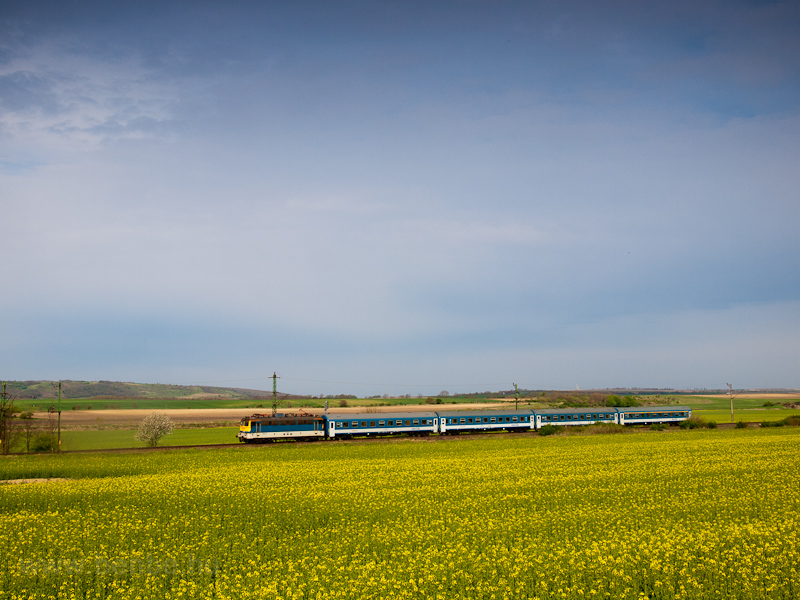 The MÁV-START 433 161 seen between Belecska and Keszőhidegkút-Gyönk photo